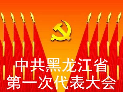 中共黑龙江省第一次代表大会