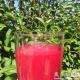 8种美味混合果汁助你轻松减肥成功