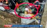 早产女婴被弃垃圾桶