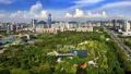 青岛成功创建国家森林城市 绿化率达40.01%