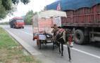 男子直播赶驴车旅游