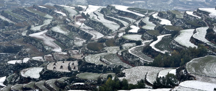 雪落梯田景致 宛如一幅绝妙的水墨画