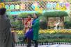 鄭州人民公園金秋菊展開幕 等你過來玩兒