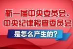 新一届中央委员会、中央纪律检查委员会怎么产生的?