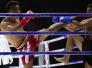 世界超级散打王争霸赛中国选手大获全胜
