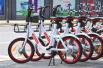 """与单车成""""暗敌""""难获投资 小鹿电单车退出北京市场"""