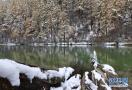 初冬的稻城 遗世独立的静谧之美