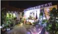 长沙首届花植艺术节开幕 即日起可免费观赏