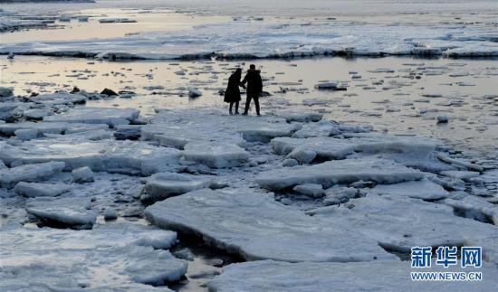 海冰回涌岸边 渤海现极地冰原景观
