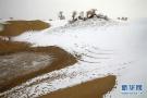 当沙漠下起了雪