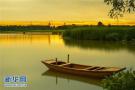 山东湿地公园260多处 这七市湿地面积占比超八成