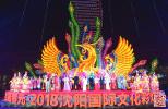 """沈阳国际文化彩灯节开幕 快去看看""""东北第一""""彩灯展"""
