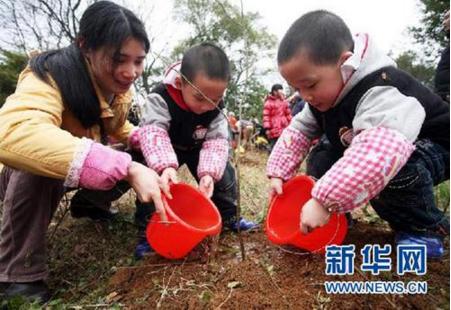 澳门国际娱乐场:北京首推植树节网上捐款 捐60元算作完成年度任务