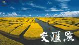江苏最美赏花踏青图:不负春光,全省最美的花海与您有约!