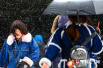 阳春三月辽宁竟然又降暴雪了 整冬没像样雪花的北京你好意思吗?