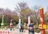 牡丹文化节期间 洛阳这四家牡丹园将执行优惠票价