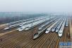 重点工程:莘南高速、济青高铁今年通 鲁南高铁明年通
