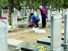 扫墓银发潮来袭 老人墓地哭晕120一上午接诊三人