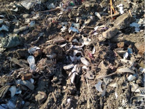 挖机挖到了地下三四米的深处,依然可见大量垃圾。有轮胎、鞋料、塑料、酒瓶等等。图片来源:中国之声官方微博