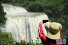 黄果树瀑布进入丰水期:水流湍急 气势磅礴