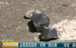 云南陨石爆炒到一克5万 专家:在国际市场只值1元