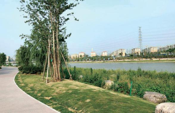 郑州贾鲁河已无黑臭现象 未来河湖连通打造生态水系圈