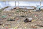 """台风""""海贝思""""已致日本58死211伤 超13万户仍断水"""