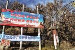 """河南""""灵宝首富""""涉黑案调查:抢金矿致11人死亡"""