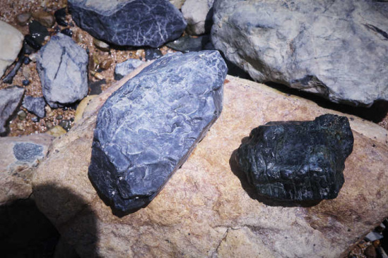 黑石头真的是陨石?普陀塘头海滩已被保护