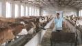 砥砺奋进的五年:互助金扶贫模式带动贫困户发牛财