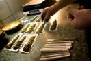 沾染大麻年龄越小越难戒除 为何在有些国家大麻合法化