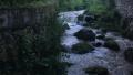 绿色桂东:青山绿水变金山银山 生态经济助力乡村旅游