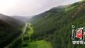 塞罕坝机械林场生态文明建设:绿水青山就是金山银山