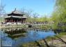 踏青赏花忙 北京市内公园周边易堵车