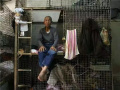 揭秘香港穷人生活