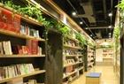 绿色藤蔓高颜值书店