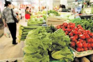 9月份菜价普遍上涨 西红柿比上月贵一半多