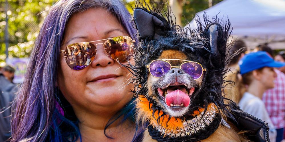 纽约:万圣节狗狗大游行 成千只宠物变装齐聚盛会