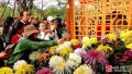 中国开封第35届菊花文化节首个周末:菊花似霞艳 游客如云来