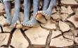 旱灾援助没水灾及时 摧毁作物可喂饱8000多万人