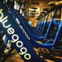 小蓝单车解散