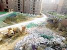清华·紫光园二期:工地垃圾成堆散发恶臭味