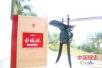 """仰韶酒业入围""""搜索中国正能量▪点赞2017"""" 对外展示好品牌"""