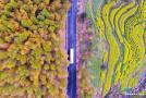 震撼航拍:安徽美景