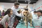 北京动物园生肖文化活动开幕