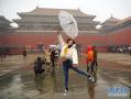 周末北京因雪而兴奋