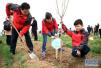 廊坊市火热开展春季万人义务植树活动