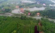河南禹州城市森林植物园