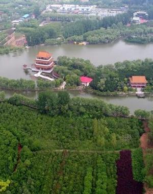 河南禹州城市森林植物园芳容绽放