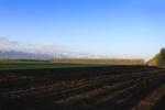 吉林省出台黑土地保护地方法规 将于7月1日施行
